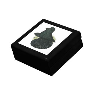 Trumpeter Pigeon Black Gift Box