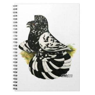 Trumpeter Pigeon Dark Splash Notebooks