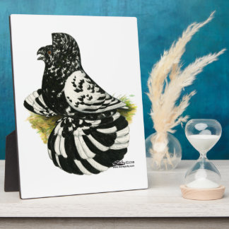 Trumpeter Pigeon Dark Splash Plaque