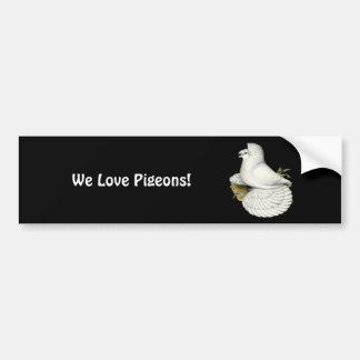 Trumpeter Pigeon White Bumper Sticker
