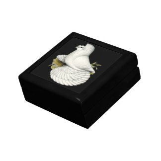Trumpeter Pigeon White Gift Box