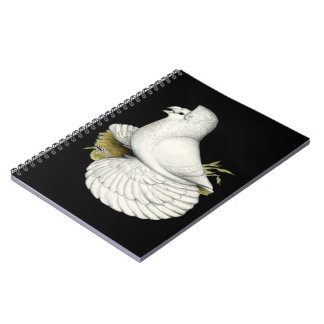 Trumpeter Pigeon White Notebooks