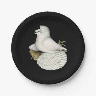 Trumpeter Pigeon White Paper Plate