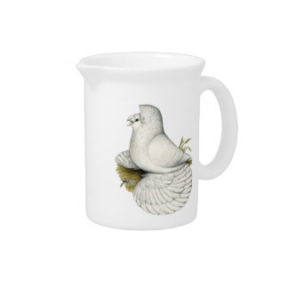 Trumpeter Pigeon White Pitcher
