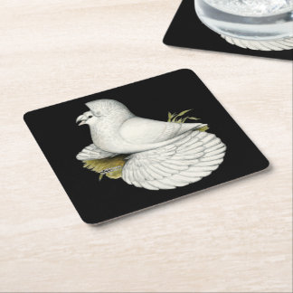 Trumpeter Pigeon White Square Paper Coaster