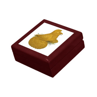 Trumpeter Pigeon Yellow Self Gift Box