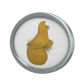 Trumpeter Pigeon Yellow Self Oval Belt Buckles