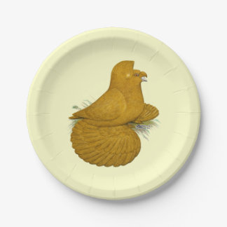 Trumpeter Pigeon Yellow Self Paper Plate