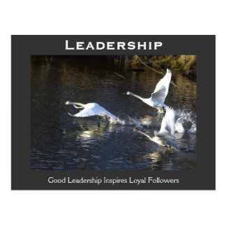 Trumpeter Swans Motivational Gifts Postcard