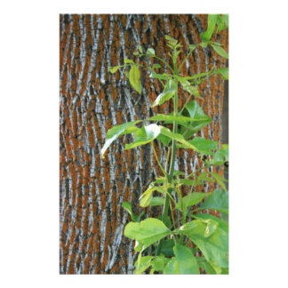 Trunk with Foliage Stationery