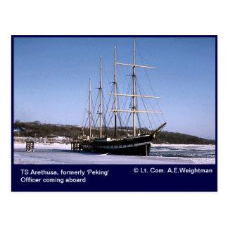 TS Arethusa,icebound Postcard