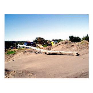 """Tsunami Driftwood"" Postcard"