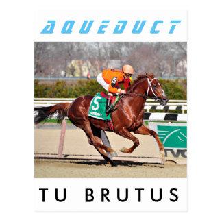 Tu Brutus- Chile Postcard