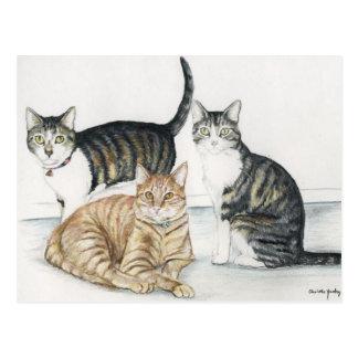 Tubby, Tiger and Tiny Original Art Postcard