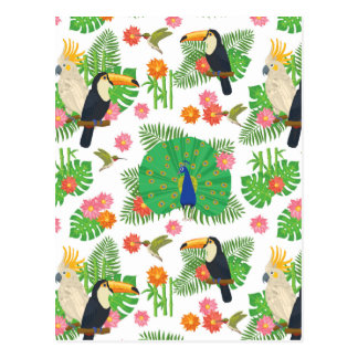 Tucan And Peacock Pattern Postcard