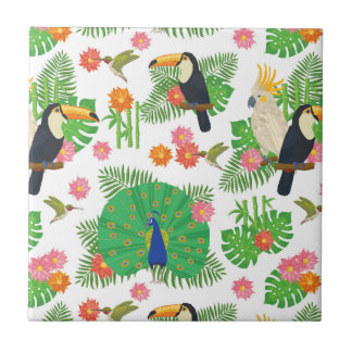 Tucan And Peacock Pattern Small Square Tile