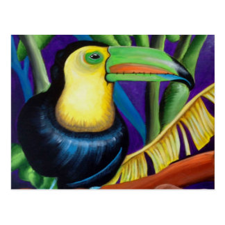 Tucan Tropical Bird Design Postcard
