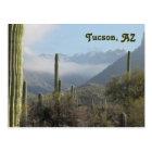 Tucson Arizona Desert Postcard