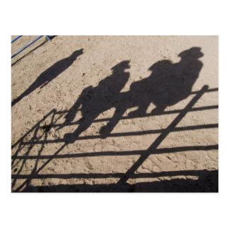 Tucson, Arizona: Shadows of Rodeo competitors Postcard