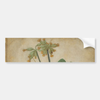 Tuft of Cowslips by Albrecht Durer Bumper Sticker