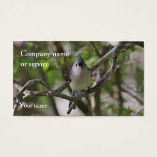 Tufted titmouse business card