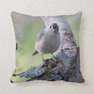 Tufted titmouse cushion