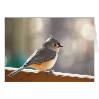 Tufted Titmouse Notecard - Blank Inside