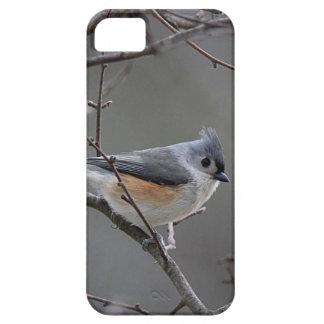 Tufted titmouse photography iPhone 5 cover