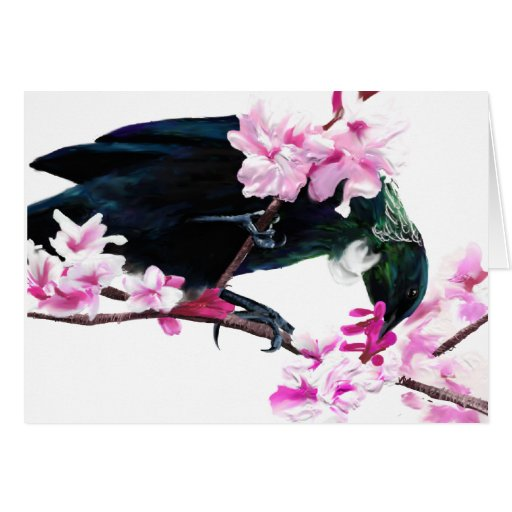 Tui Bird Feeding on Cherry Blossoms Greeting Card