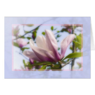 Tuilip Magnolia Pastel Greeting Card