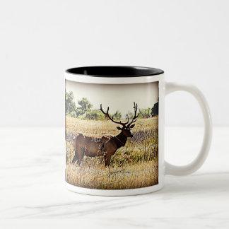 Tule Elk Bull Two-Tone Coffee Mug