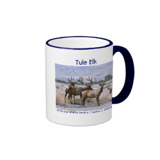 Tule Elk Ringer Mug