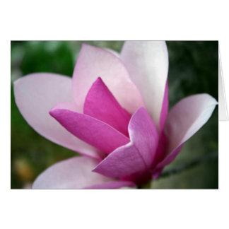 tulip 001 card
