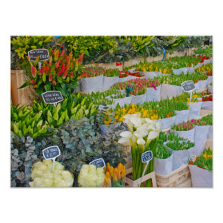 Tulip and Flower Market in Amsterdam Poster