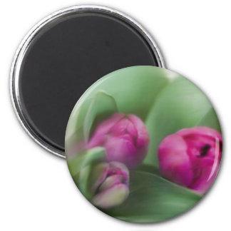 Tulip Bouquet 6 Cm Round Magnet