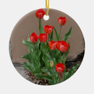 Tulip by the Wall Ornament