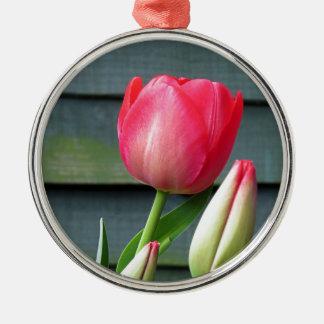 Tulip Ornaments