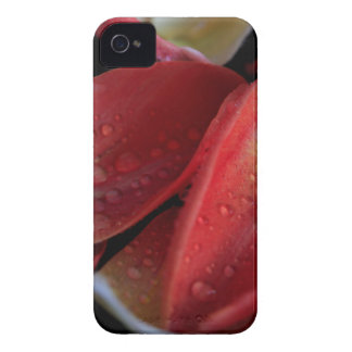 Tulip Embers Case-Mate iPhone 4 Cases