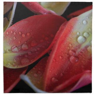 Tulip Embers Napkin