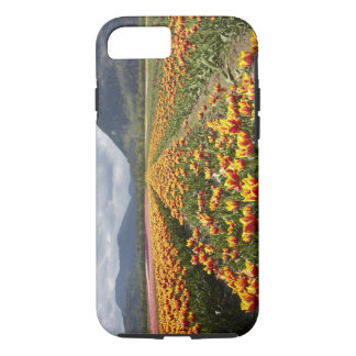 Tulip Farm near Agassiz, British Columbia, iPhone 7 Case