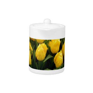 Tulip Festival - 27 Teapot