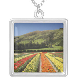 Tulip Fields, near Tapanui, West Otago, South 2 Square Pendant Necklace