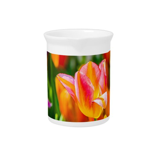 Tulip flowers of different colours pitcher