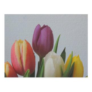 Tulip flowers Post card aquarel painting art