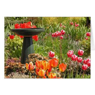 Tulip fountain card