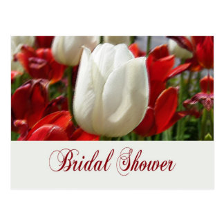 Tulip Garden Bridal Shower Invites Postcard