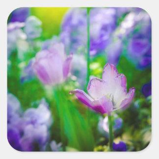 Tulip garden, Giverny, France Square Sticker