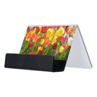 Tulip Garden in the Spring Desk Business Card Holder