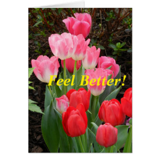 Tulip Get Well Card