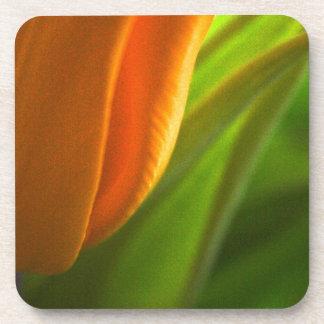 """""""Tulip"""" Hard Plastic coasters - set of 6"""